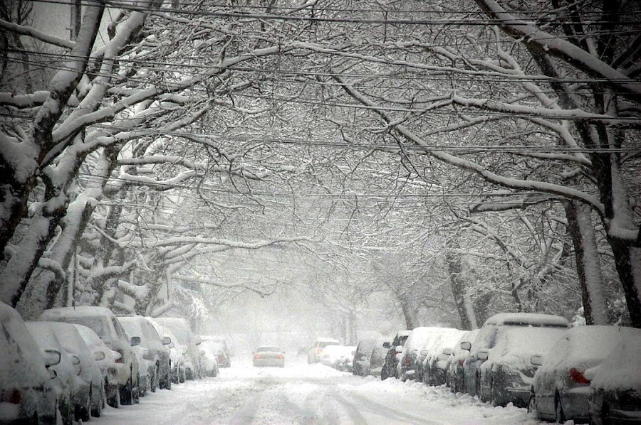 by Harold Stoler - City,  Street & Park  Street Scenes ( street, snow, white, landscape,  )