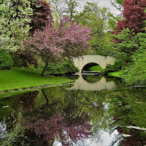 Bridge Blooms by Kathy Woods Booth - Landscapes Waterscapes ( gardens, reflections, waterscape, calmness, mirrored reflections, peaceful )
