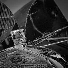 by Ron Meyers - Black & White Objects & Still Life
