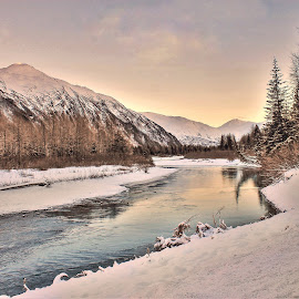 Early Spring  by Patricia Phillips - Landscapes Travel ( alaska portage spring )