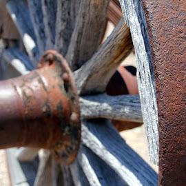 Wagon Wheel by Amanda Crippes - Transportation Other ( old, wood, wheel, wagon, rust )