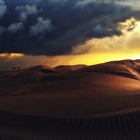 by Gusti Yogiswara - Landscapes Deserts