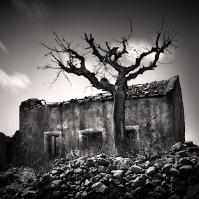 Forgotten House by Jeremy Farrance - Buildings & Architecture Other Exteriors ( broken home, black and white, standing alone, shadows )