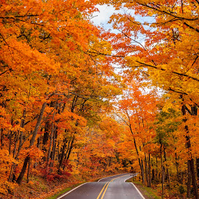 US 41 close to Copper Harbor by Wenkan Zhu - Landscapes Forests