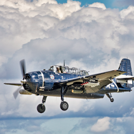 Vintage Aircraft in Flight by Pat Eisenberger - Transportation Airplanes ( vintage aircraft, flight, airplane, aircraft, vintage military aircraft, vingate, in flight, military,  )