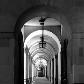 Adelphi Terrace by DJ Cockburn - Black & White Buildings & Architecture ( electric light, limestone, building, monochrome, arch, black and white, architecture, city, grayscale, urban, england, the strand, london, northbank, westminster, night, britain, sidewalk, pavement )