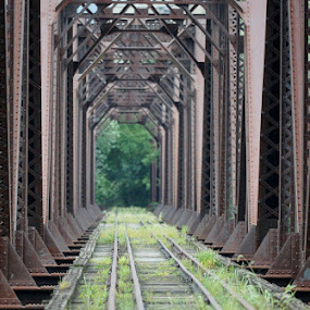 Grand Rapids Railroad Bridge by Ann Overhulse - Buildings & Architecture Bridges & Suspended Structures ( pw )