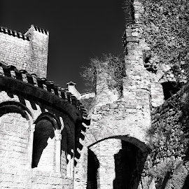 Entrance to the  Abbey of Gellone by Johannes Oehl - Buildings & Architecture Architectural Detail ( old, languedoc-roussillon, french, architecture, heritage, historic, b/w, religion, ancient, religious symbol, lovely, pastoral, abbey, structure, church, vine, world heritage, worship, unesco, roof, european, season, monastery, brush, wall, cross, plant, monochrome, b&w, europe, black and white, brick, grapevine, romance, pretty, idyllic, august, france, construction, 11th century, quaint, building, abbey of gellone, peaceful, middle ages, black & white, beautiful, romantic, scenic, saint-guilhem-le-désert, black&white, history, vine stock, romanesque, summer, bow, public, dark age, medieval, unesco world heritage, world )