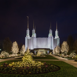 2015 Festival of Lights at Washington, DC Mormon Temple by Gary Stanley - Buildings & Architecture Other Exteriors ( dc, washington, festival of lights, christmas lights, mormon temple )