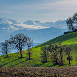 Green Hills & White Mountains by Emanuele Zallocco - Landscapes Mountains & Hills