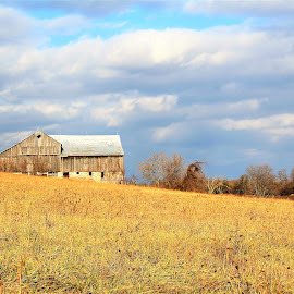 Old Ontario Barn by Linda    L Tatler - Buildings & Architecture Other Interior (  )