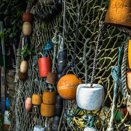Fish Net by Ty Wolf - Artistic Objects Other Objects