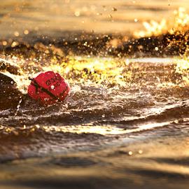 by Matthew Black - Sports & Fitness Swimming