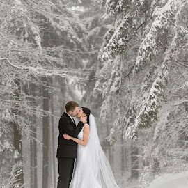 White Winter Weddings by Daniel Venter - Wedding Bride & Groom ( winter, wedding, snow, marriage )