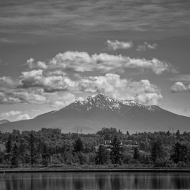 Pilchuck  by Todd Reynolds - Black & White Landscapes