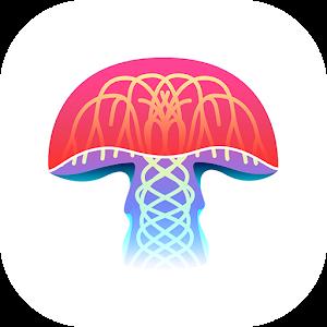 Mushroom Identification For PC / Windows 7/8/10 / Mac – Free Download