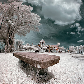 The Play ground~ by Gray Tow - Landscapes Prairies, Meadows & Fields ( field, playground, relax, infrared, landscape )