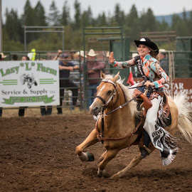 Rodeo Royalty by Craig Lybbert - Sports & Fitness Rodeo/Bull Riding ( royalty, horse, palamino, rodeo, cowgirl )