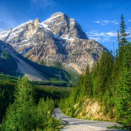 Mountains  by S U Photography - Nature Up Close Rock & Stone ( canada, yoho national park, british columbia )