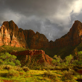 Zion Guardians by Vita Perelchtein - Novices Only Landscapes ( clouds, mountain, green, trekking, guardians, forest, storm, explore usa, zion, hiking, national park, mountains, zion national park, after the rain, nature, monument, rain )
