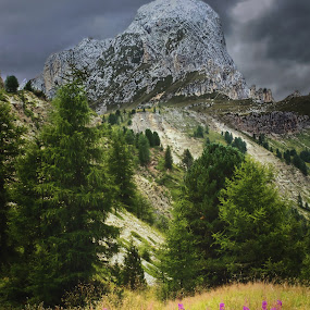 Piz de Putia by Mark Soetebier - Landscapes Mountains & Hills ( dolomiten, passo delle erbe, piz putia, val badia, odle, dolomiti, parco naturale delle odle - putia - dolomiti - unesco, dolomites, val gardena, putia,  )
