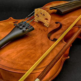 Elegance ! by Marco Bertamé - Artistic Objects Musical Instruments ( music, wood, musical, violin, string, brown, yellow, bow, instrument, black )