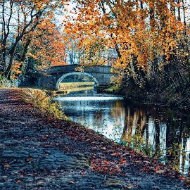 walk down the canal by Betty Taylor - Landscapes Weather ( fall colors, autumn, autumn colors )