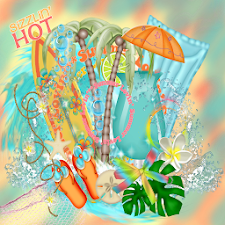 Sizzlin Summer GO THEME