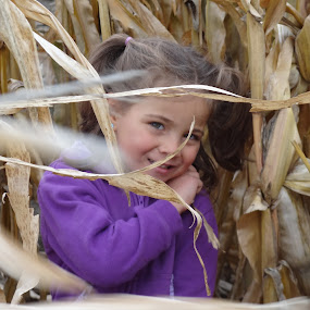 Playing in the corn by Carolyn Holland - Babies & Children Child Portraits
