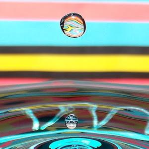 drops April 19 2012f1204a.jpg