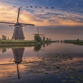 5 in a row - Kinderdijk by Rémon Lourier - City,  Street & Park  Historic Districts