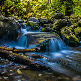 Summer Flow by Ivan Johnson - Landscapes Waterscapes
