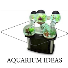 co2 system for planted tank