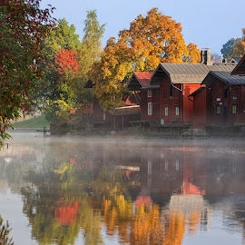 Misty morning by Jukka Pinonummi - Landscapes Travel ( porvoo, morning glory, reflections, finland, autumn colours, rivers, morning, colours, autumn, fog, beautifull, trees, river, mist )