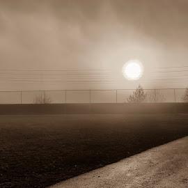 Foggy road by Mathias Hansen - City,  Street & Park  Skylines ( clouds, sky, grass, fog, railroad, trees, way, seipa, road, daylight, sun )