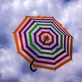 Cloudy forecast by Estislav Ploshtakov - Artistic Objects Other Objects