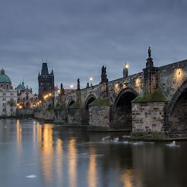 Charles bridge Prague by Robert Grim - City,  Street & Park  Historic Districts ( czech republic, foto, bridge, prague, historic )