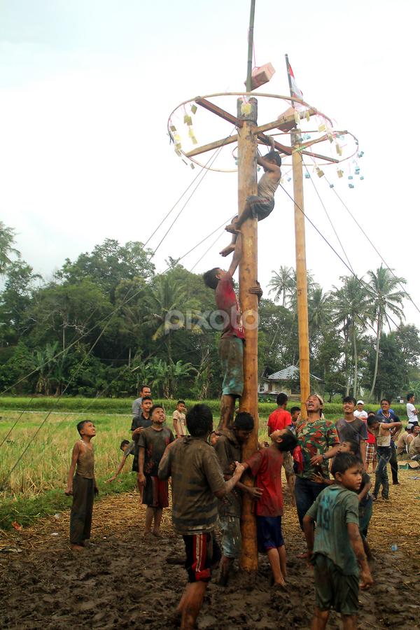 panjat pinang nute tree climb contest by Mevi Rosdian - Babies & Children Children Candids ( west sumatera tourism, indonesia tourism, panjat pinang,  )