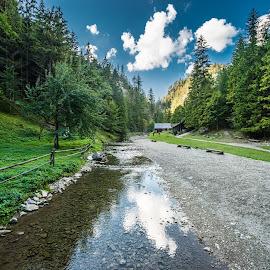 Kvacianska valley // Slovakia by Laky Kucej - Landscapes Forests