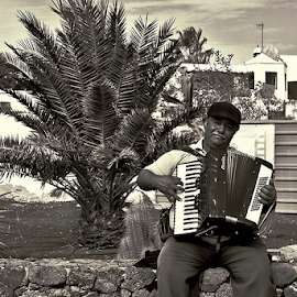 Music For A Meal by Jackie Matthews - People Musicians & Entertainers ( beggar, street, lanzarote, acordian, wall )