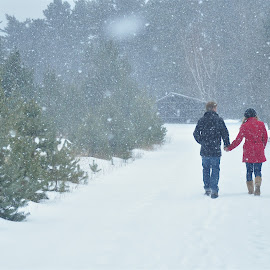 Engagement Walk in Snowfall by Mike DeLong - People Couples ( winter, hand in hand, snow, couple, walk,  )