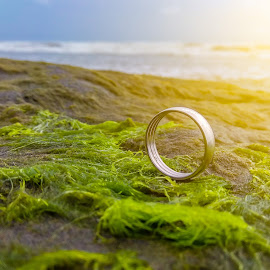 Nature finds a way by Bilal Ahmad - Artistic Objects Jewelry ( ring, nature, tricolor, beach, rocks )