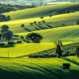 Green Hills by Emanuele Zallocco - Landscapes Mountains & Hills