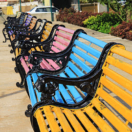Relaxing Chairs by Guru Prasad - City,  Street & Park  City Parks ( bangalore, park, chairs, guru prasad, guru, india, relaxation )