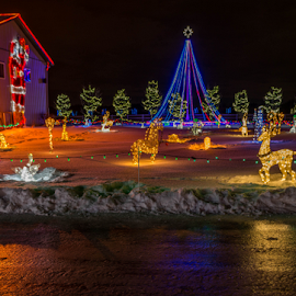 Christmas by Joseph Law - Public Holidays Christmas