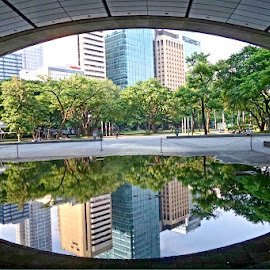 City Reflections by Alvin Saint - Buildings & Architecture Office Buildings & Hotels ( ayala triangle, makati,  )