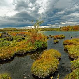 Automn at Myvatn lake by Michaela Firešová - Landscapes Waterscapes ( nature, colorful, lake, landscape, automn )