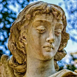 tears of an angel by Lennie Locken - Buildings & Architecture Statues & Monuments