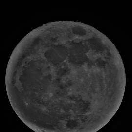 Super Moon by Hal Gonzales - Black & White Landscapes ( moon, night photography, black and white, moonlight, moonrise )
