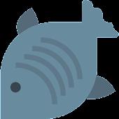 Quiz of Fish